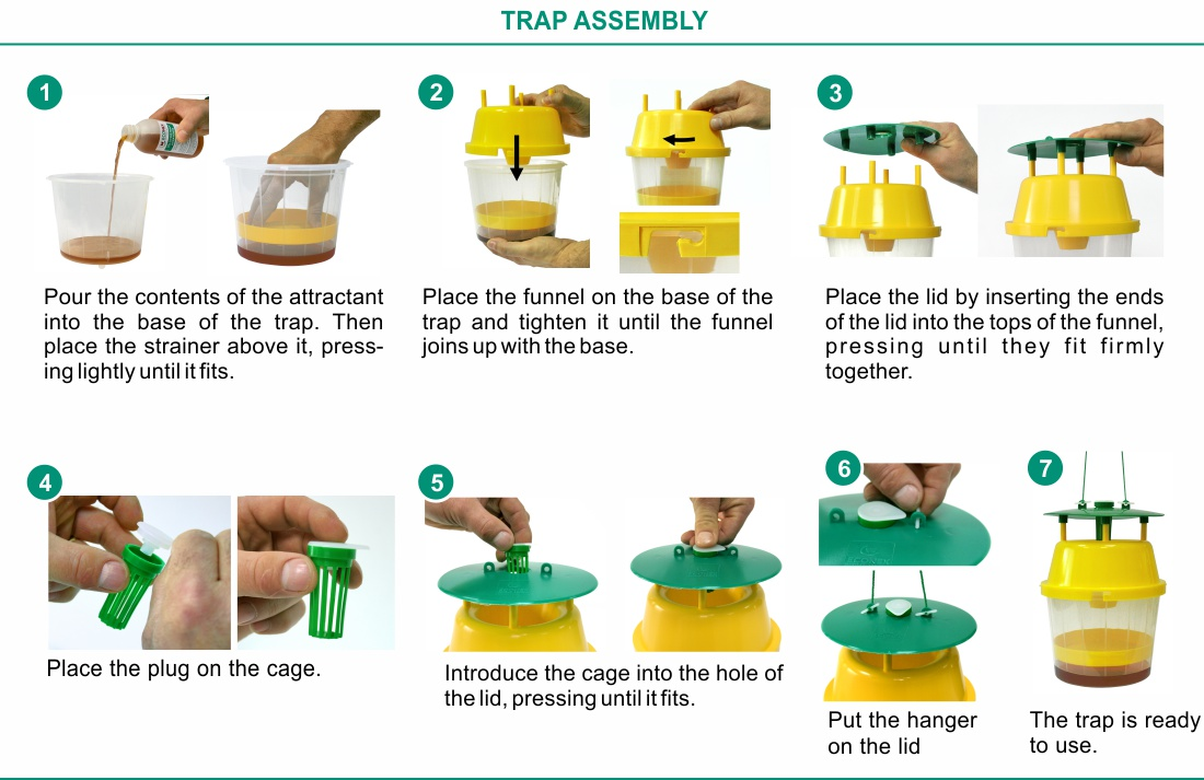 Trap assembly of VELUTINATRAP®